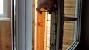 Самостоятельная регулировка балконной защёлки Maco