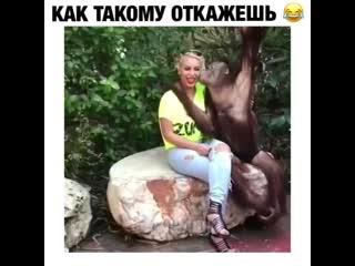 Любовь с первого взгяда)