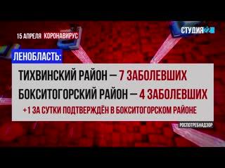 Коронавирус: информация по Бокситогорскому району на 15 апреля