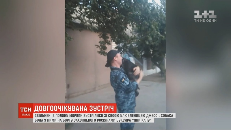 Звільнені з полону українські моряки зустрілися зі своєю улюбленицею Джессі