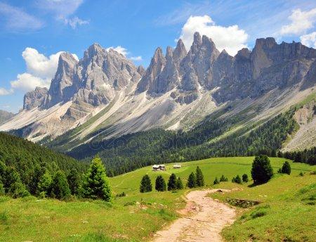 Альпы самые высокие среди всех горных систем, полностью расположенных в Европе. Около 180 гор в Альпах имеют высоту более 1,2 км, а более 100 из них достигают высоты в 4 км.Альпийский горный
