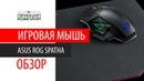 ASUS ROG SPATHA Обзор Игровая мышь чемпионов!