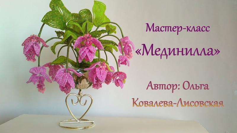 МК МЕДИНИЛЛА MEDINILLA ИЗ БИСЕРА Мастер класс Ольги Ковалевой Лисовской Цветы из бисера
