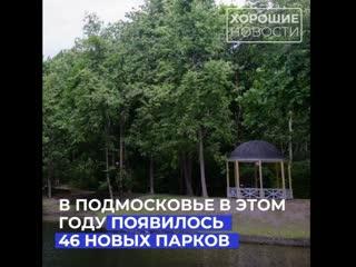 Более 40 новых парков культуры и отдыха появились в Подмосковье с начала года