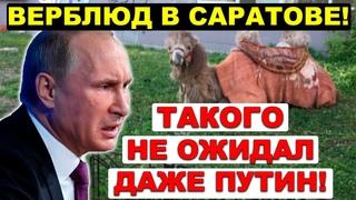 📢 Скандальное Заявление в Думе 🔥 Николай Бондаренко о том как  единороссы пилят региональные бюджеты