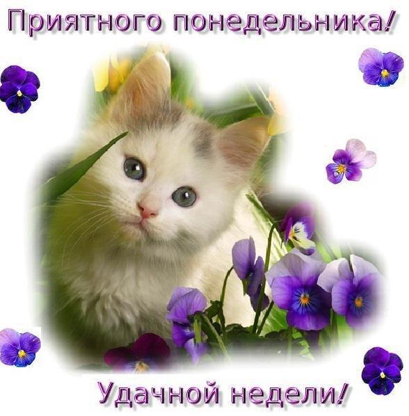 фото из альбома Натальи Коваленко №1