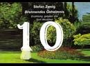 10. Spuren im Mondlichtследы в лунном свете/Brennendes Geheimnis/S. Zweig