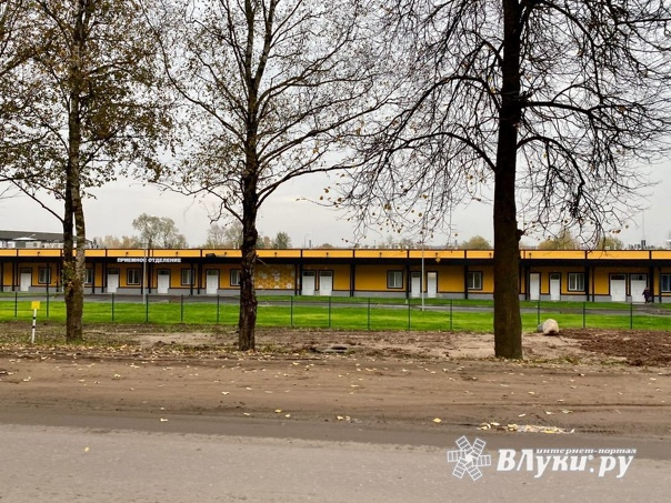 В Псковской области снизился темп прироста заболев...