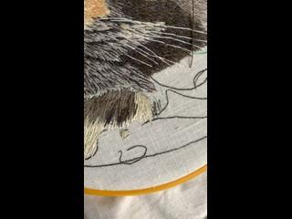 Процесс Фени   Вышивка портретов животных