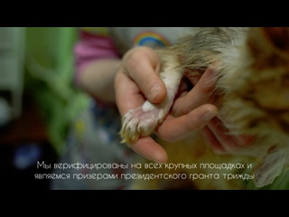 Видео от Dashu Lik