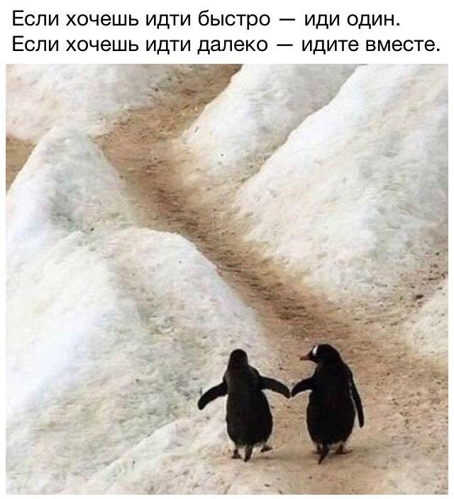 фото из альбома Дарьи Сергеевны №9