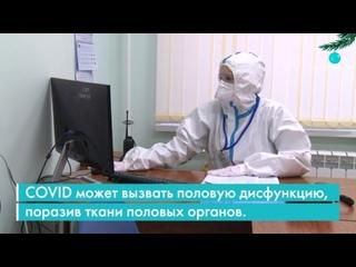 Опасность коронавируса для половой системы