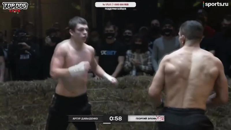 TopDog TDFC6 Артур Давыденко vs. Георгий Элоян