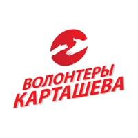ВолонтерыКарташева