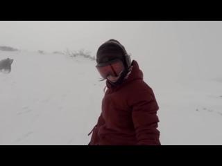 Сноубордистка случайно сняла гнавшегося за ней медведя