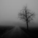 hell is empty | группа