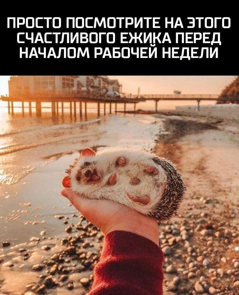 фото из альбома Олега Улакова №15