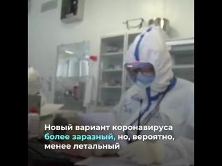Первый случай британского штамма коронавируса в России