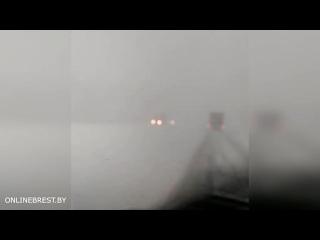 Видимость 50 метров... Очевидец сообщает о метели на трассе М1 около Кобрина