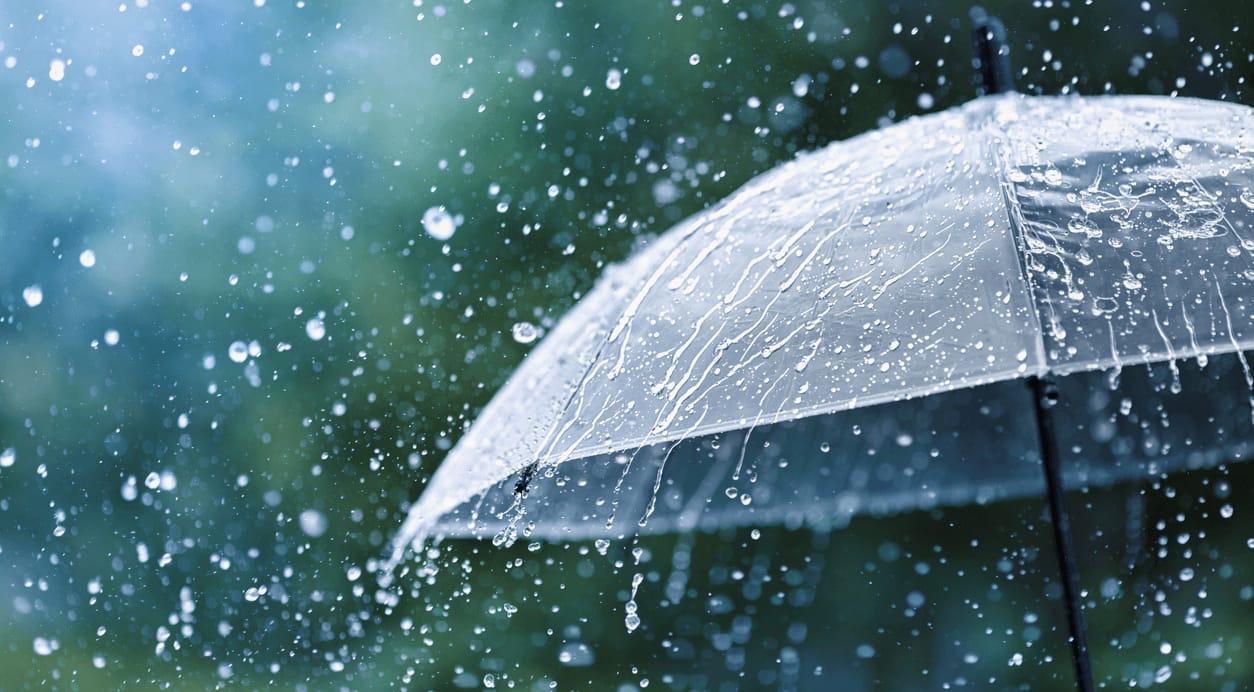 Новая неделя нас встречает теплом и дождямиДнём