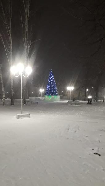 Сегодня на территории сквера зажгла свои огни Новогодняя ёлка городского округа...