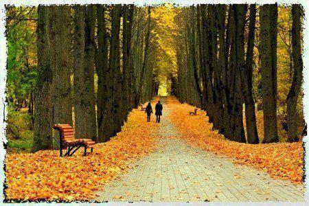 """""""Осенние листья"""""""
