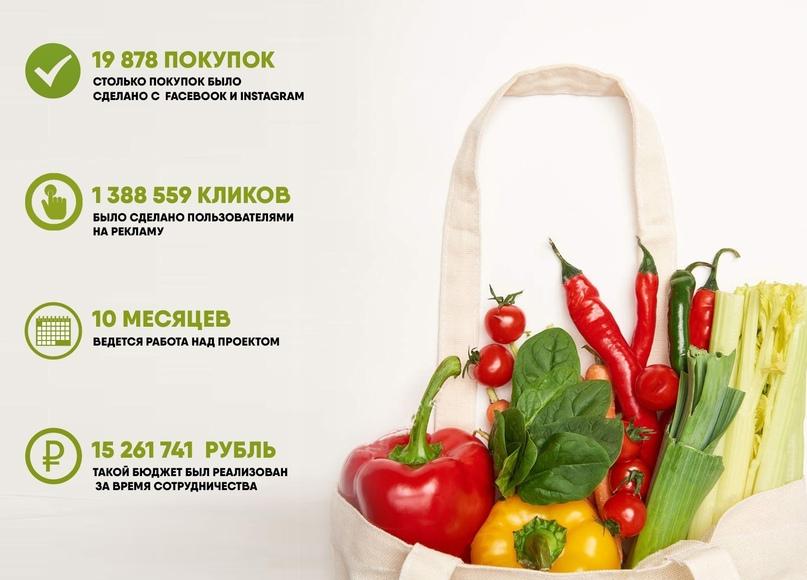 Открутили 15,2 млн рублей за 10 месяцев в нише «продукты питания», изображение №1