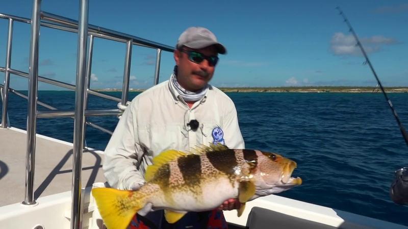 Рыбалка на острове Провиденс Мировая рыбалка Сезон 4