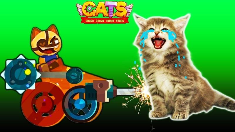 ВОЙНА КОТИКОВ 4 видео про котиков в игре CATS веселая красочная мультяшная детская игра