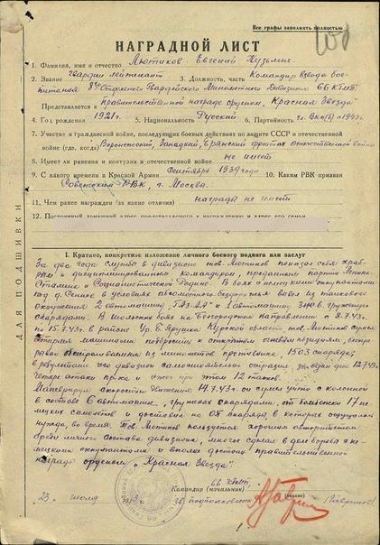 Герой Советского Союза Лютиков Е.К., изображение №2