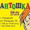 Магазин Антошка