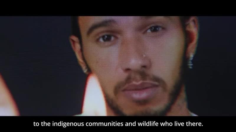 Хэмилтон в ролике посвящённом защите лесов Амазонии