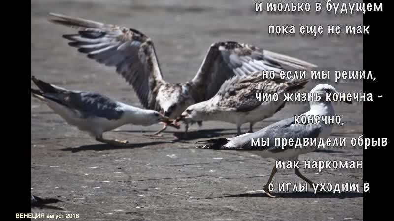ВЕНЕЦИЯ 82 А не пора ли все начать сначала Дмитрий Короленко БХЛ сл pointalex