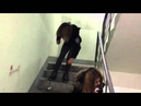 Пьяная девушка,падает с лестницы.